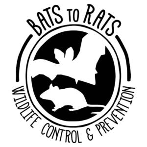 Bats to Rats logo